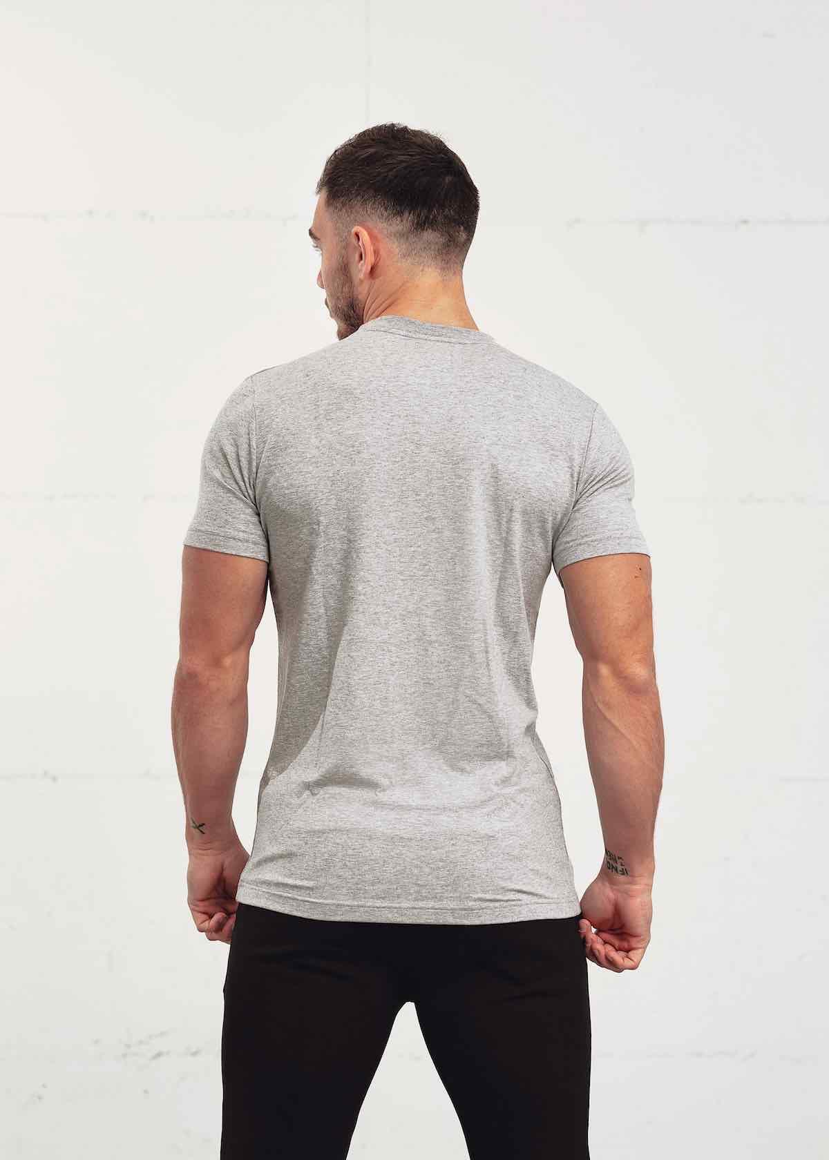 pm 21 grey tshirt back